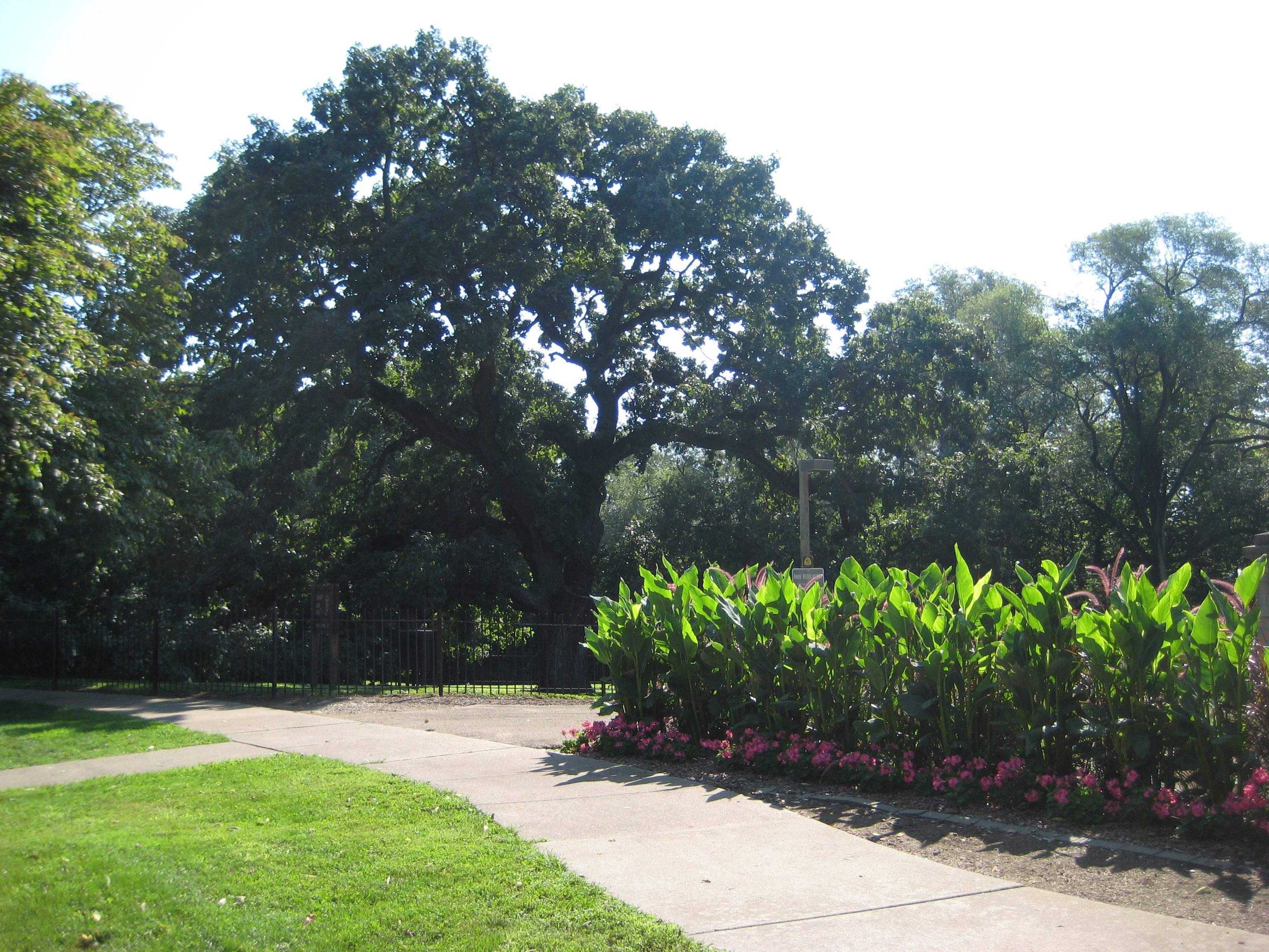 Giant Oak Park - Peoria Park District