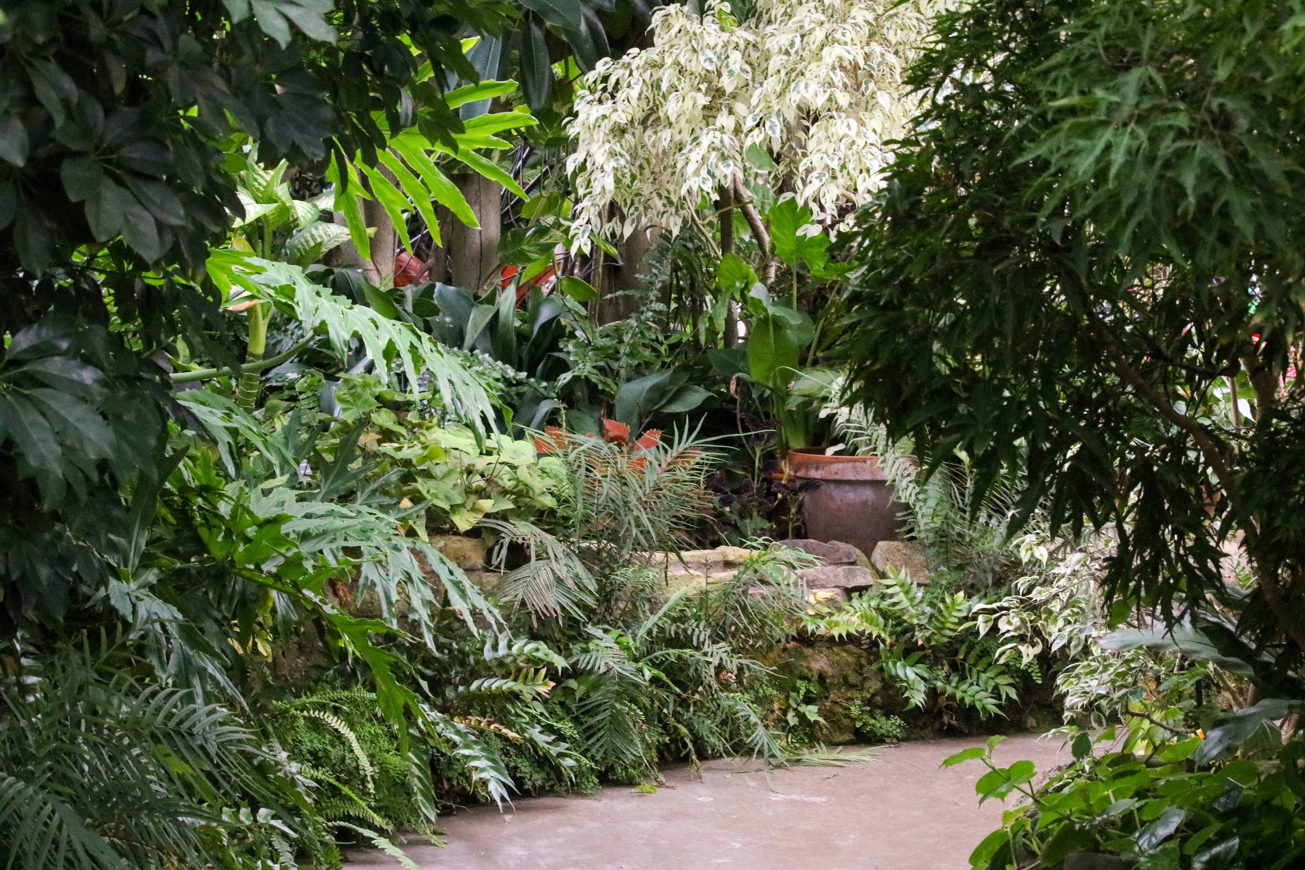 Luthy Botanical Gardens