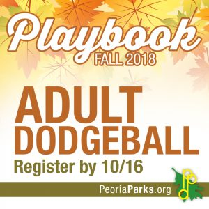 Adult Co-Rec Dodgeball League @ Franciscan Recreation Complex | West Peoria | Illinois | United States