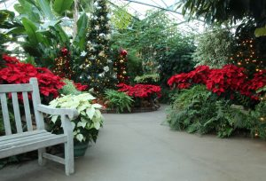 A Christmas Garden Party @ Luthy Botanical Garden | Peoria | Illinois | United States